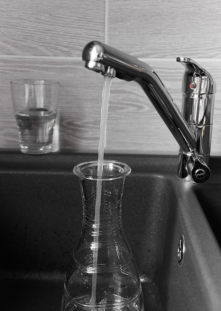 counter top water filter serving water
